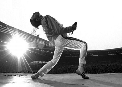 Rock Band QUEEN Freddie Mercury PHOTO Rock & Roll Print Poster Publicity Pic