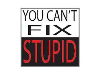 Funny Decal You Can't Fix Stupid Sticker Car Truck Hard Hat Work Contruction Job](Contruction Hat)