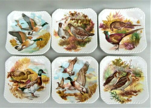 Royal Adderley Floral Wildlife Bone China Tea Bag Plates Holders Set of 6