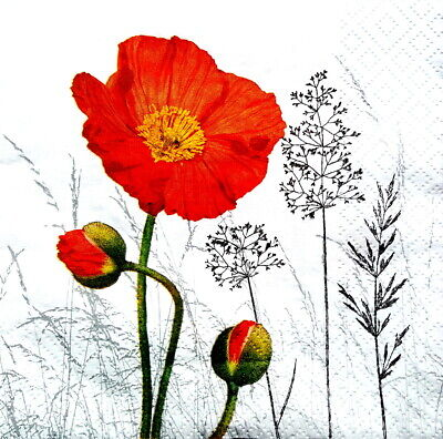 4 Lunch Paper Napkins  Decoupage Craft Vintage Party Napkin  Poppies, Meadow