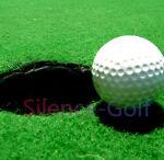Flash-2007   Golf&Hat&Pets