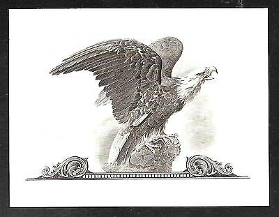 Engraving - Regal Eagle Intaglio Print by Mike Bean, Retired BEP printer.