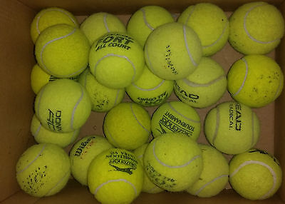 25 Used Branded Tennis Balls - ideal for dog toy etc (machine washed)