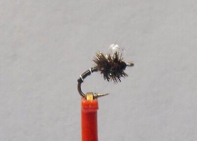 Zebra  Midge Emerger  Fly  (Black with Clear bead sz 24 ) HOT PATTERN