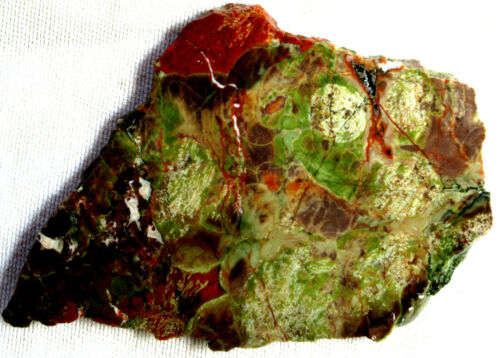 Fire Mountain Rhyolite Slab - Red - Green - White - 155 Grams - Australia