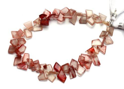 """Natural Andesine Labradorite Gem Faceted Slice Shape Beads Strand 8"""" 68Cts."""