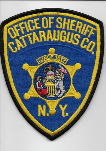 Cattaragus County Sheriff State NY Colorful NEW