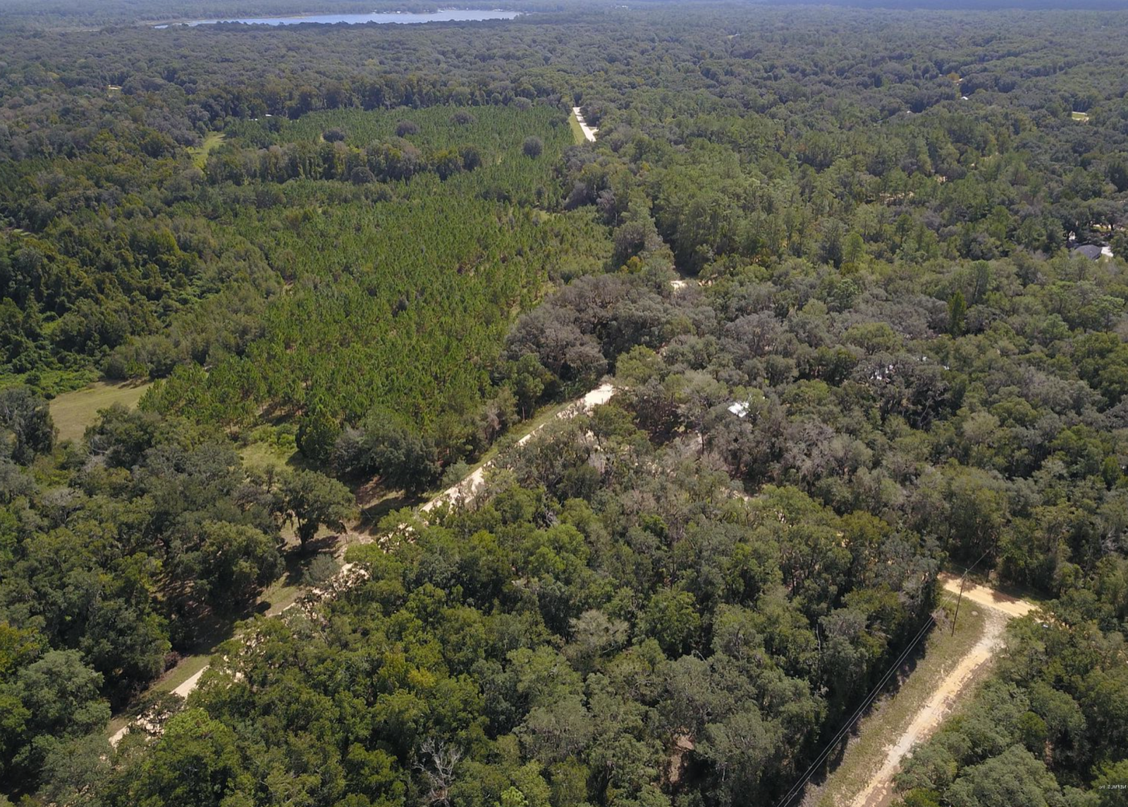 VACANT LAND FOR SALE 1/10 ACRE FLORIDA LOT NEAR POWER NEAR LAKE ROAD ACCESS  - $2,725.00