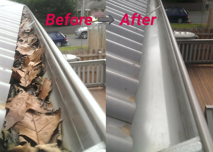CHEAPEST GUTTER CLEANING IN MELBOURNE!!!