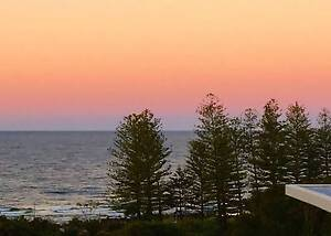 Beautiful double room in BURLEIGH HEADS! Burleigh Heads Gold Coast South Preview