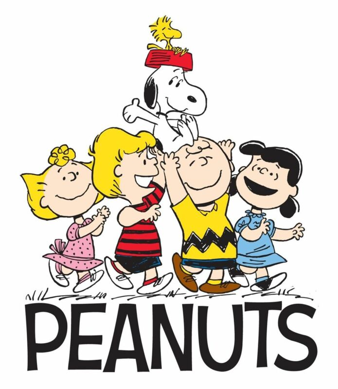 """Peanuts Charlie Brown Iron On Transfer for LIGHT-COLOR Fabric 5""""x5.75"""" or 8x9.5"""""""