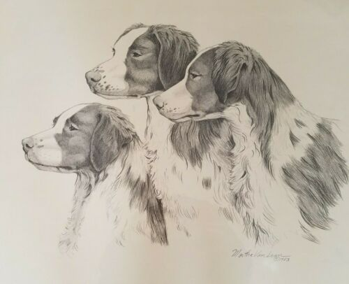 Original Graphite Drawing by Martha Van Loan of Brittany  1983