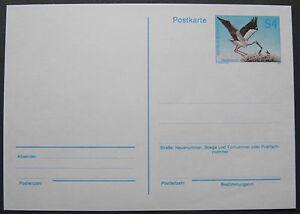 Postkarte Weißstorch, postfrisch ** - <span itemprop=availableAtOrFrom>Wien, Österreich</span> - Postkarte Weißstorch, postfrisch ** - Wien, Österreich