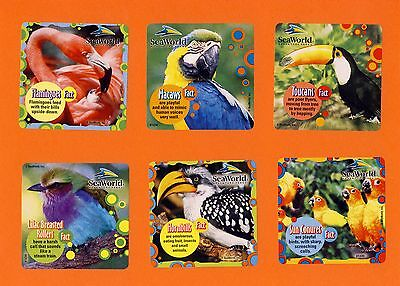 12 SeaWorld Tropical Bird Facts - Large Stickers - Macaw, Flamingo, Toucans