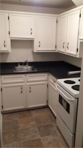 1 Bedroom Apartment: Downtown Dartmouth
