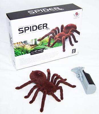 RC Ferngesteuerte Spinne Fernbedienung Braun Spider Spielzeug Braun Neu OVP