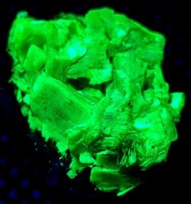 Fluorescent Autunite on MATRIX. Uranium mineral High activity. Check source.
