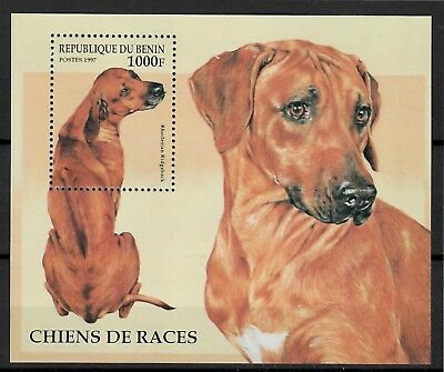 (W1243) BENIN, 1997, DOGS, BL. 28, MNH/UM, SEE SCAN