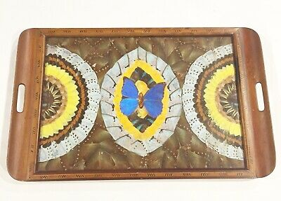 Vtg Art Deco Butterfly Wing & Wood Inlay Inlaid Tray Brazil taxidermy antique