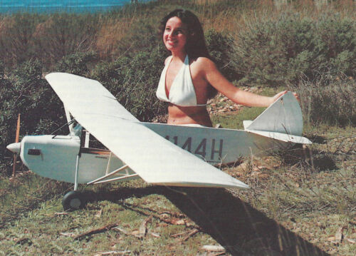 """Giant 1/4 Scale Headwind """"B"""" Plans, Templates and Instructions 93ws"""