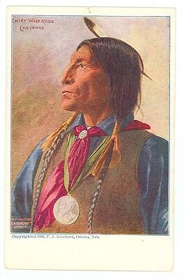 Wolf Robe (Cheyenne Chief Wolf Robe (unmailed 1903 post card (indians538)