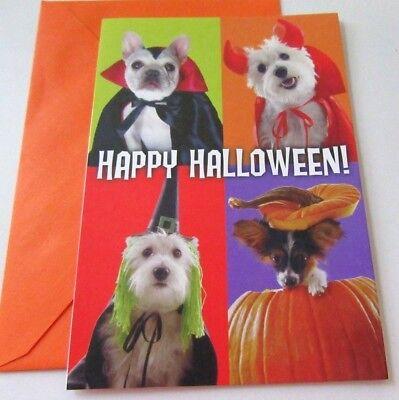 Unused Halloween Card Dogs Puppies in Costumes Happy Halloween Hallmark