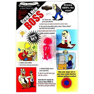 Grow A Your Own New Boss Secret Santa Office Christmas Manger Female Gift UK