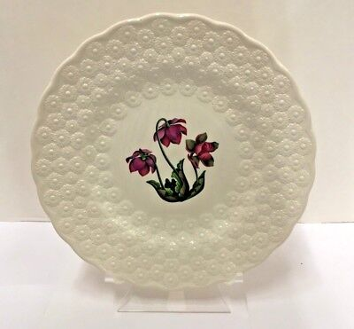 Spode CANADIAN PROVINCIAL FLOWERS Luncheon Plate (Pitcher Plant) More items avai
