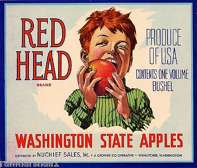 Wenatchee Washington State Red Head - Blue Apple Fruit Crate Label Art Print