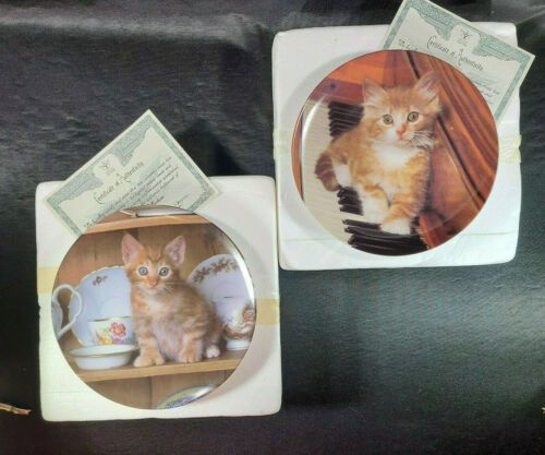 PICTURE PURRFECT Kitty Cat Kitten Collector Plate Lot Mint Tabby Vintage 🐈