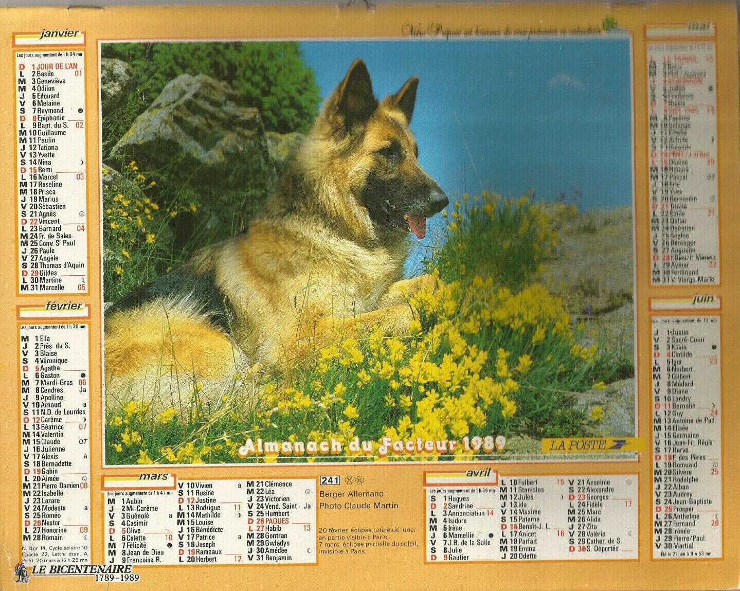 Calendrier  ptt1989 (59).berger allemand,rochers, fleurs, jument/ poulain