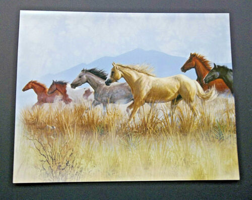"Tree Free Greetings "" Band On The Run "" 11""x 14"" Card w/ Env"