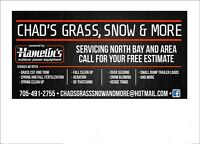 Need lawn care  ! Come check us out!