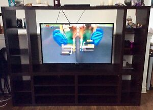 Beautiful Entertainment Unit ($200 or BestOffer)