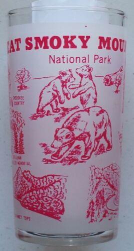 Vintage Great Smoky Mountains National Park souvenir glass