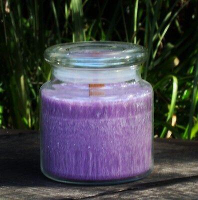100hr CLOVE ORANGE & CEDAR LEAF Eco WOOD WICK SOY GLASS JAR CANDLE with SNUFFER ()