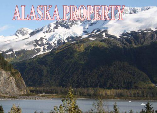 ALASKA LAND FAIRBANKS CASH! NO RESERVE REMOTE 4.9  ACRES ON GESKAKMINA LAKE RARE