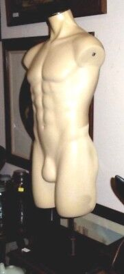 Male Mannequin Wstand - Full Torso - Large Fiberglass Body Wadjustable Height