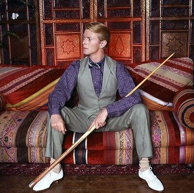 8x10 Print David Bowie Music Superstar Icon #DB116