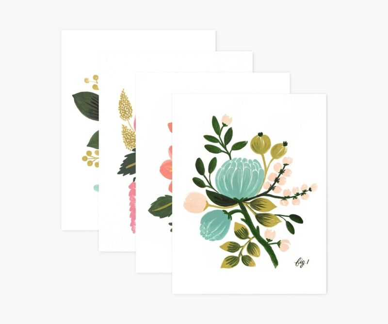 RIFLE PAPER Co. Boxed Set of 8 Botanical Assorted Card Set