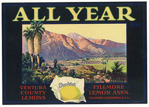 ALL YEAR Fillmore Ventura Mountains Grove Lemon Label