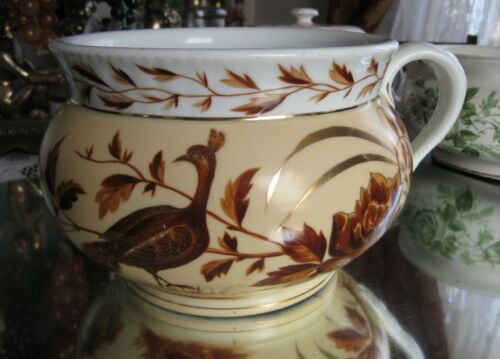 STUNNING  VERY RARE  ANTIQUE  PEACOCK  FLORALS  CHAMBER POT