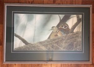 Wood duck print by E. Somers.