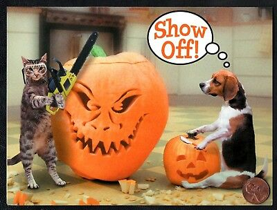 Halloween Cat Dog Carving Pumpkins Chainsaw Mask SHOW OFF - Greeting Card - NEW - Cat Halloween Carving