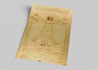 ACEO  Leonardo da Vinci Vitruvian Man Canvas Giclee Print