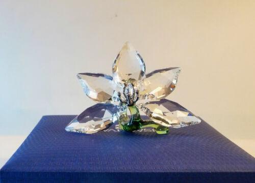 SWAROVSKI 2013 Joining/Renewal Gift – Orchid on Green Stem 1142858 w/Box