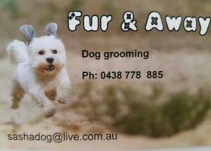 Fur & Away Ferny Grove Brisbane North West Preview