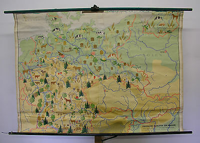 Schulwandkarte Wall Map Agriculture Germany 160x115cm ~ 1955 Fruit Vegetables