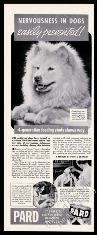 1939 Chow Chow photo Pard dog food vintage print ad