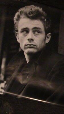 James Dean Poster Quote Dream Jacket Uk Oop Mint 24X36 Black White